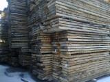 Laubholz  Blockware, Unbesäumtes Holz Zu Verkaufen Österreich - 70mm Esche mix