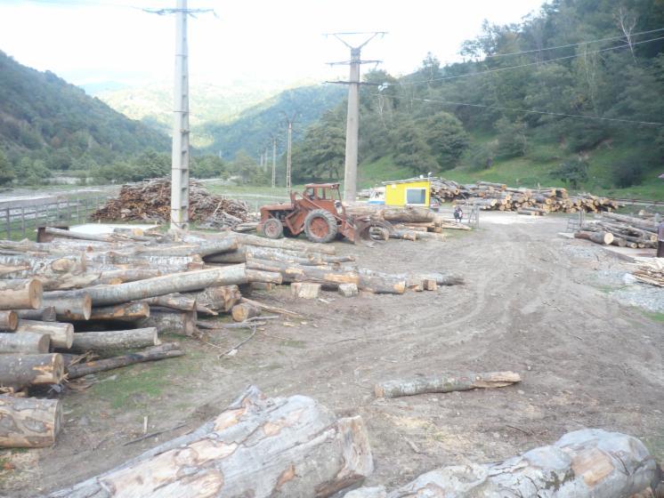 firewood-in-pallets