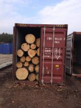 Lithuanian Pine and Spruce Logs