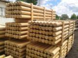Hardwood  Logs CE - Cylindrical trimmed round wood, Robinia (Acacia)/Oak Machine Rounded Poles Palisade, CE