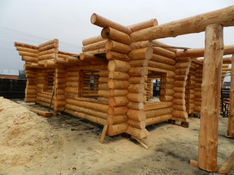 Casa di tronchi canadese abete picea abies legni for Case di tronchi di blocchi di legno