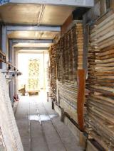 Complete Company For Sale Italy - Wood working company for sale (sawmill) Western Ukraine