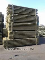 Softwood  Logs FSC - Round poles from pine