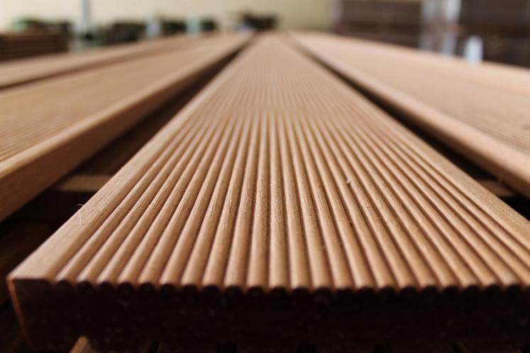 Global Biznes Sp. z o.o - Importateur de bois