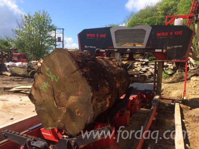 Horizontal-log-band-saw--WRAVOR--WRC-2000-for-big-logs