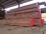 Tropical Wood  Sawn Timber - Lumber - Planed Timber PEFC - Keruing Sawn Timber for sale