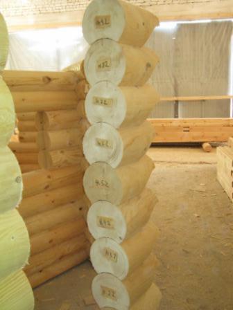Canadian-Log-House--Cembran-Pine--Siberian-Yellow-Pine---%28Pinus-cembra%29--250-0-m2-%28sqm%29