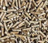 Firewood, Pellets And Residues Fir Abies Alba - Fir Wood Pellets
