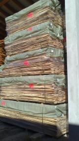 Laubholz  Blockware, Unbesäumtes Holz Ahorn Bergahorn, Sycamore - Ahorn 26; 30; 35; 40; 45; 50; 55; 60;