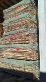 Laubholz  Blockware, Unbesäumtes Holz Ahorn Bergahorn, Sycamore - Ahorn 40; 45; 55; 60;