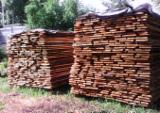 Unedged Hardwood Timber - Oak Boules from Romania, Bucuresti