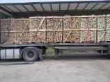 Firewood, Pellets And Residues - Beech, Oak, Turkish Oak  Firewood/Woodlogs Cleaved 8-15 mm