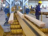 Nadelschnittholz, Besäumtes Holz Zu Verkaufen - Ponderosa Pine - Gelbkiefer, Thermisch Behandelt - Thermoholz