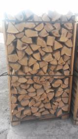 Firelogs - Pellets - Chips - Dust – Edgings - Oak (European) in Poland Firewood/Woodlogs Cleaved