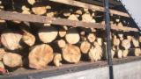 Hardwood  Logs - FSC, 10-40 cm, Birch (Europe), Firewood, Ukraine