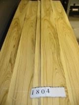 Sliced Veneer AA Extra For Sale Italy - Natural Veneer, Ulivo, Flat cut, plain