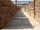 Laubholz  Blockware, Unbesäumtes Holz Rumänien - Loseware, Buche
