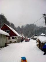 Aziende Intere In Vendita Romania - Vendo Segheria Romania