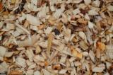 木片-树皮-下脚料-锯屑-削片 刨花