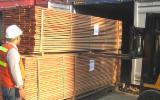 Wholesale  Glued Board - IPE, CUMARU, S4S