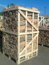 Echipamente second-hand pentru prelucrare primară şi prelucrarea lemnului  aprovizionare Polonia Lemn de foc despicat - nedespicat, Lemn de foc despicat, Fag (Europa)