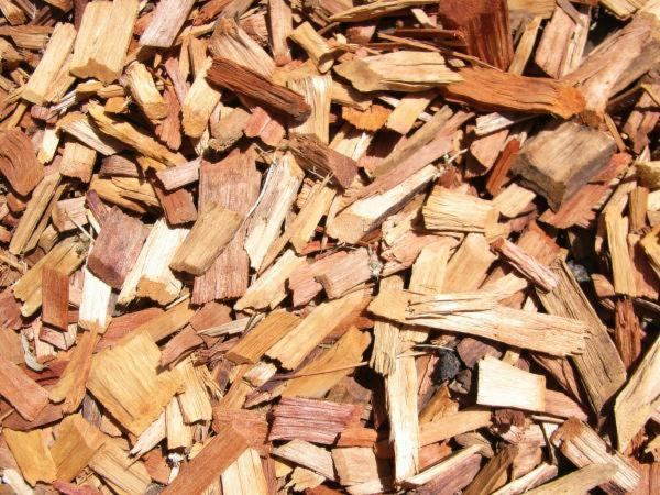 Wholesale PEFC/FFC Birch Wood Chips From Forest from France