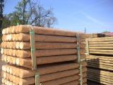 Poland Softwood Logs - Turned wood, wood stakes without bark