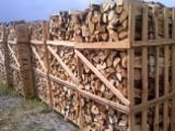 Buy Or Sell  Firewood Woodlogs Cleaved Romania - Firewood (Oak , beech, hornbeam)