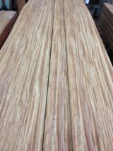 Sliced Veneer AA Extra For Sale - Natural Veneer, Sipo, Flat cut, plain