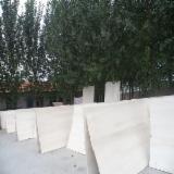 Achat Vente Panneaux Bois Massif - Vend Panneau Massif Paulownia  16 mm Shandong