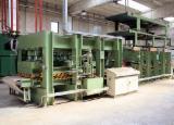 Maszyny Do Obróbki Drewna Na Sprzedaż - Plywood Presses For Flat Surfaces Cremona Używane w Włochy