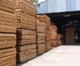 Tropical Wood  Sawn Timber - Lumber - Planed Timber - Selling Seraya Strips
