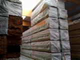 20.000m3 mélèze de Sibérie en stock
