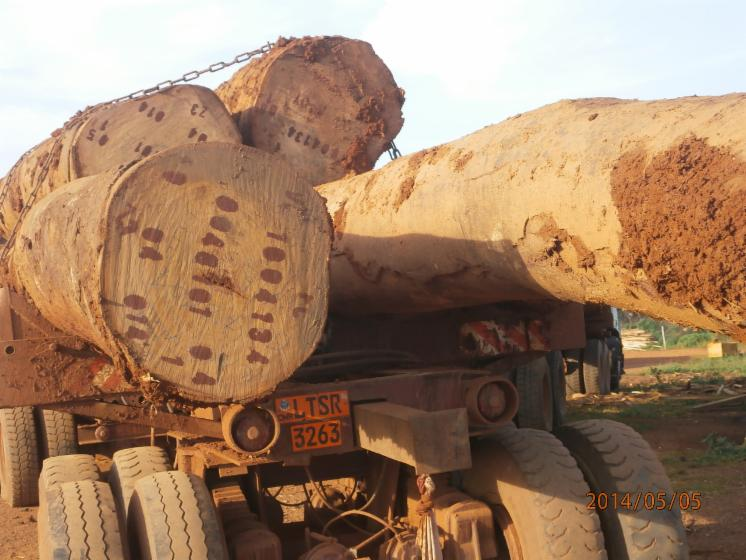 WE-CAN-SUPPLY-QUALITY-LOGS---LUMBER-FROM-CAMEROON--