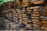 Hardwood - Square-Edged Sawn Timber - Lumber  - Fordaq Online market Planks (boards) , Beech (Europe)