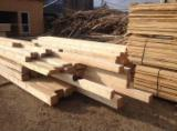 Softwood Timber - Sawn Timber Supplies - 20+ mm Fresh Sawn Fir/Spruce from Romania, Moisei, Jud, Maramures