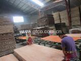 Okoume/bintangor Plywood