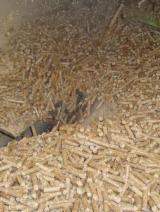 Commercio all'ingrosso Pellet di Legno ISO-9000 Tutte le specie di latifoglie in Vietnam