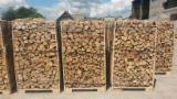 Fresh firewood BEECH