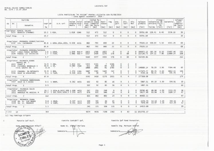Spruce-Standing-Timber-BISTRITA-NASAUD