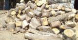 Find best timber supplies on Fordaq - All Broad Leaved Species Off-Cuts/Edgings