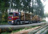 Servicii De Transport Lemn - Transport forestier, transport lemn, racontata, camion cu macara