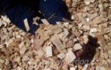 Firelogs - Pellets - Chips - Dust – Edgings FSC - FSC EUCALYPTUS NITENS in Chile