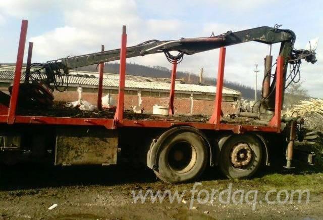 camion-transport-bustean-cu