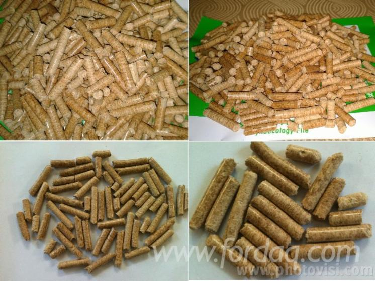 Supply wood pellet with the best quality and price