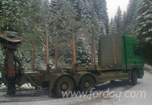 camion-transport-bustean---135-000-lei