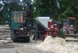 Gebraucht GIAGUARO CC3200 2012 Altholzbrecher Zu Verkaufen Italien