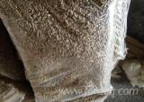 Wholesale  Wood Pellets - Wholesale Beech (Europe) Wood Pellets in Romania