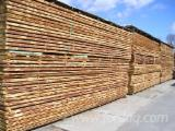 Softwood  Unedged Timber - Flitches - Boules Germany - Siberian Larch lumber