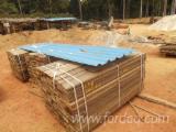 Sawn Lumber Short: Padouk